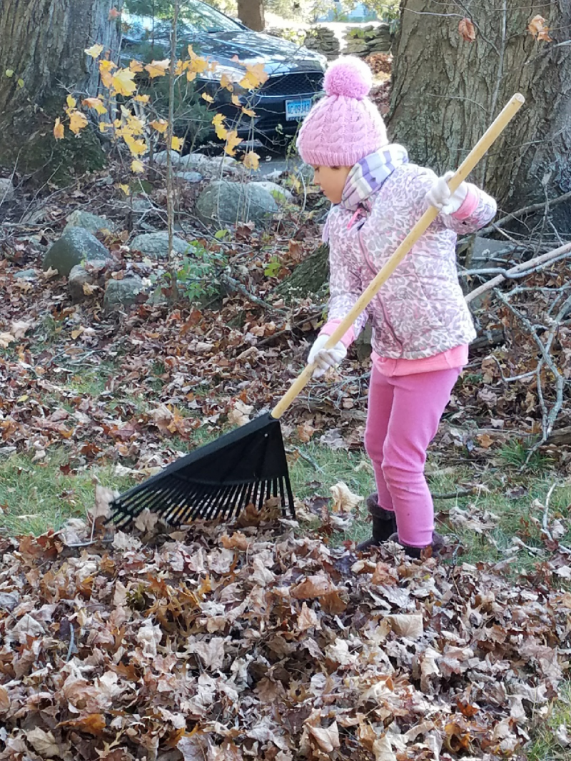 Fall Clean-up 2017_4