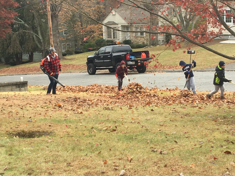 Fall Clean-up 2017_6